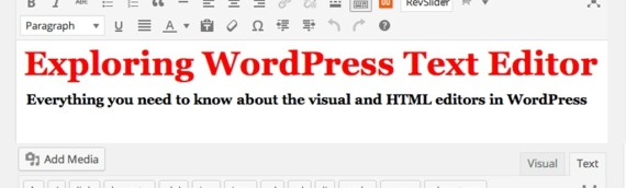 Exploring WordPress Text Editor